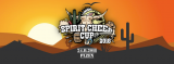 Spirit Cheer Cup 2018