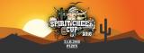 Spirit Cheer Cup 2018